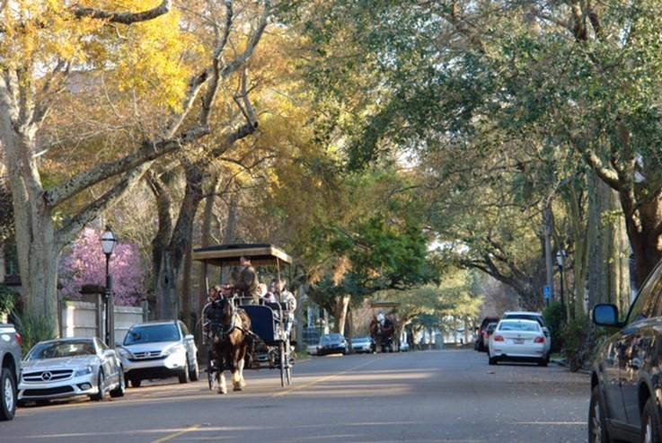 チャールストンの街並み (写真提供: SCGR 吉村 亮太)