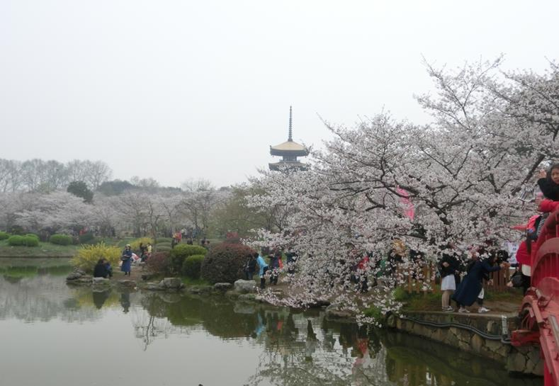 Wuhan, China: Historical city famous for the Romance of the Three Kingdoms and its cherry blossom parks