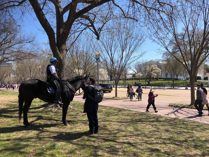 ホワイトハウス前に広がるラファイエット公園(筆者撮影)