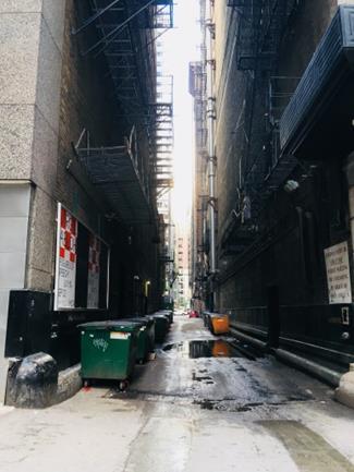 延焼防止の小道(alley)とアメリカンサイズのゴミ箱(dumpsters)(筆者撮影)