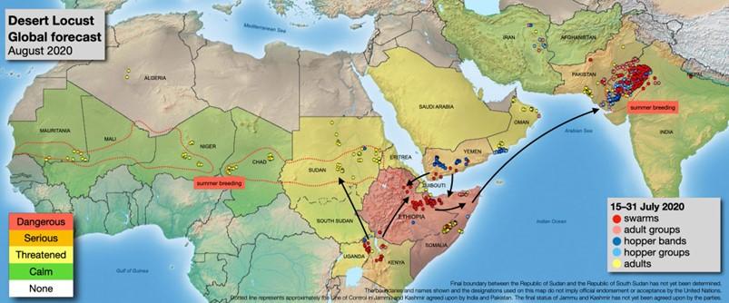 【図8:サバクトビバッタの群れの分布図】(出所:FAO)